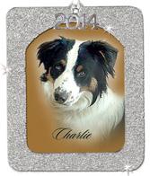 2014 Silver Glitter Ornament